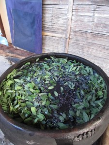 Cotton skein in the earthenware vat with the fermenting leaves.